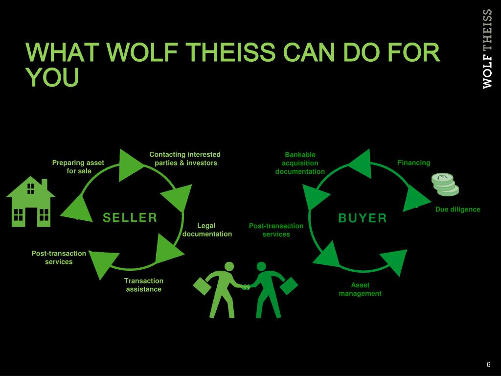 WHAT WOLF THEISS CAN DO FOR YOU