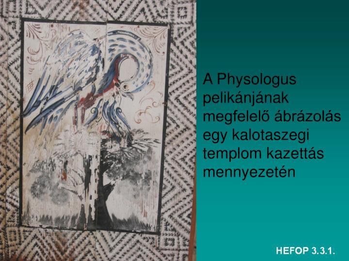 A Physologus pelikánjának megfelelő ábrázolás egy kalotaszegi templom kazettás mennyezetén