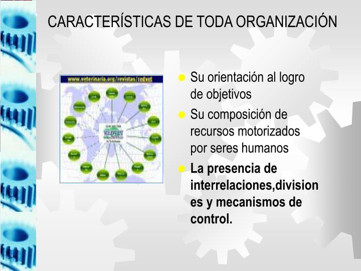 CARACTERÍSTICAS DE TODA ORGANIZACIÓN