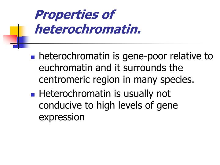 Properties of heterochromatin.