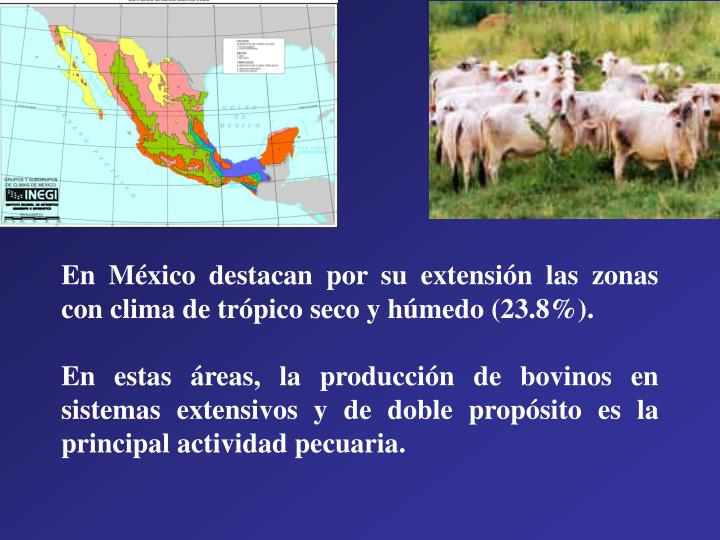 En México destacan por su extensión las zonas con clima de trópico seco y húmedo (23.8%).