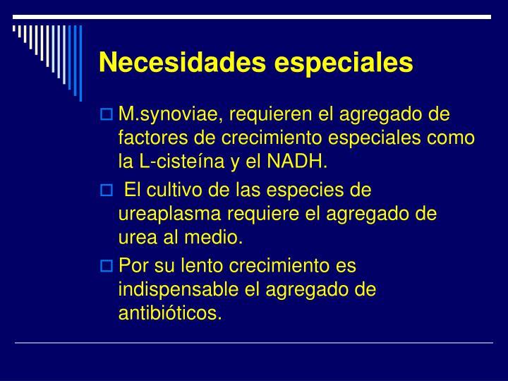 Necesidades especiales