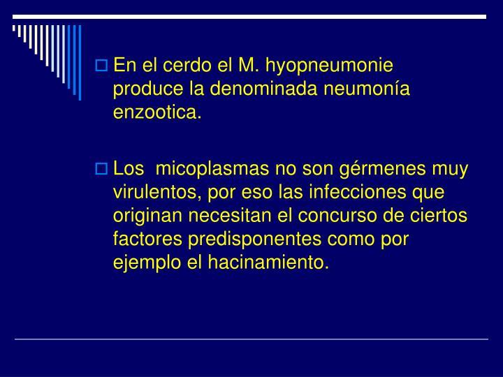 En el cerdo el M. hyopneumonie produce la denominada neumonía enzootica.