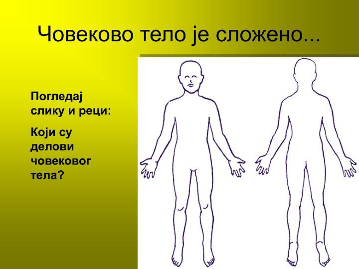 Човеково тело је сложено...