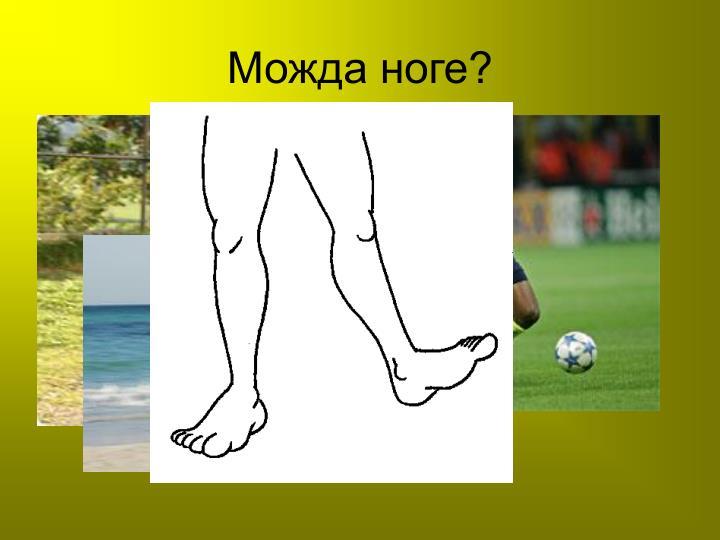Можда ноге?