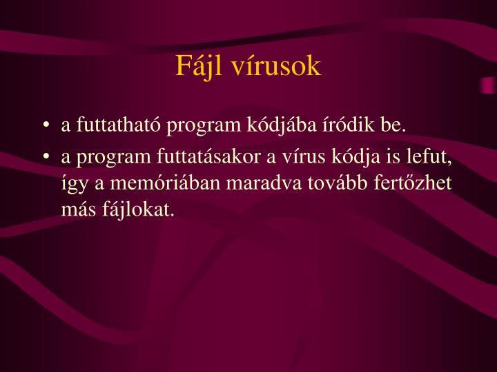 Fájl vírusok