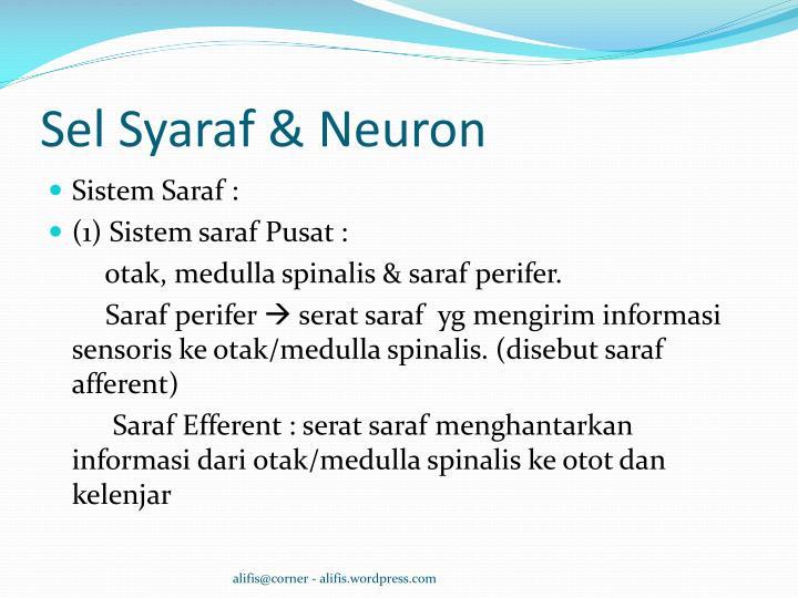 Sel Syaraf & Neuron
