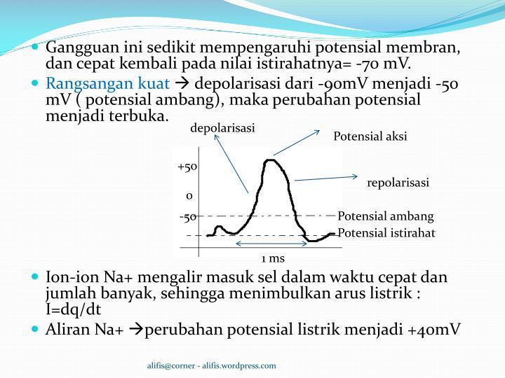 Gangguan ini sedikit mempengaruhi potensial membran, dan cepat kembali pada nilai istirahatnya= -70 mV.