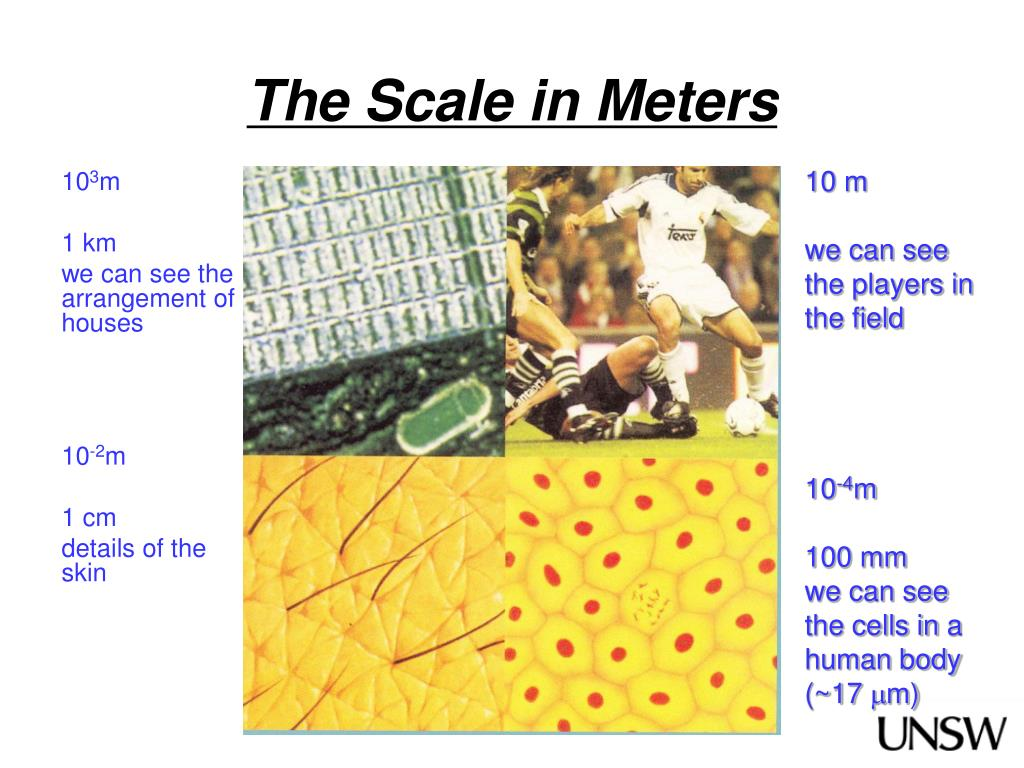 The Scale in Meters