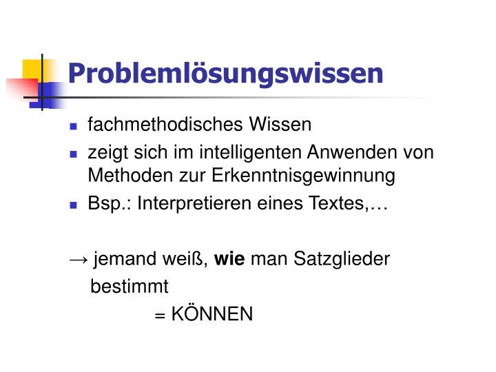 Problemlösungswissen