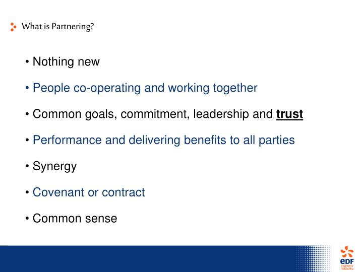 What is Partnering?