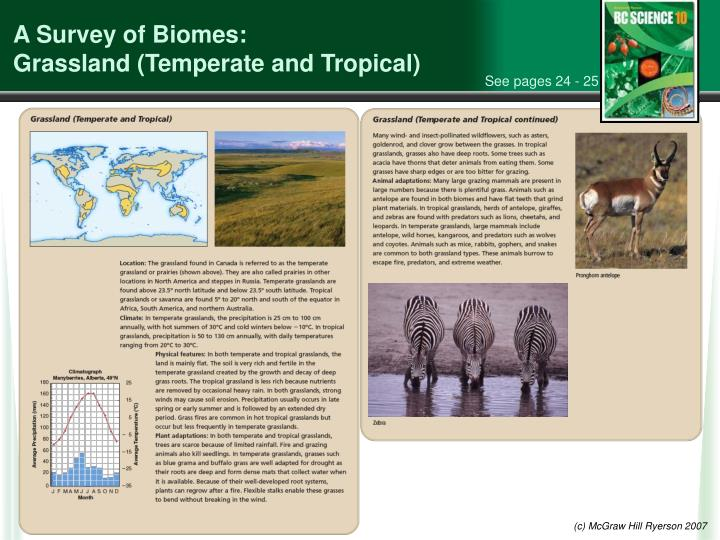 A Survey of Biomes: