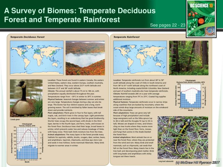 A Survey of Biomes: Temperate Deciduous Forest and Temperate Rainforest