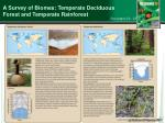 a survey of biomes temperate deciduous forest and temperate rainforest
