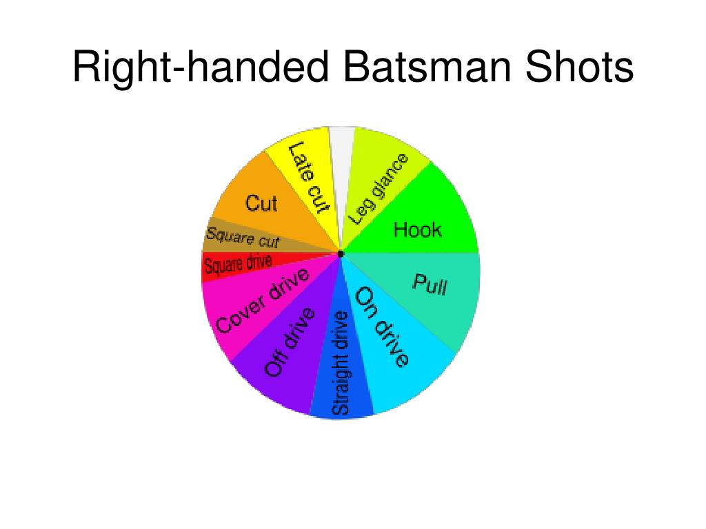 Right-handed Batsman Shots