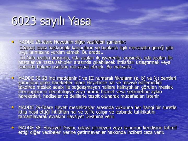 6023 sayılı Yasa