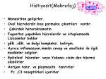 histiyosit makrofaj