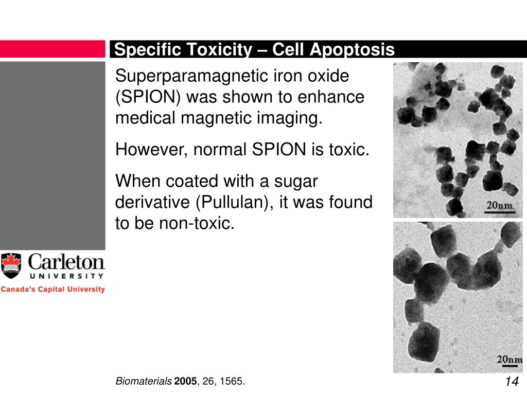Specific Toxicity – Cell Apoptosis