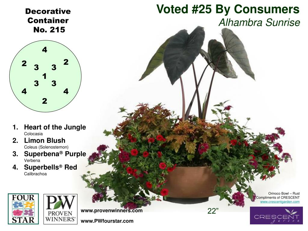Voted #25 By Consumers