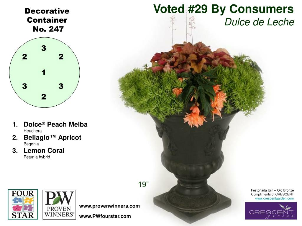 Voted #29 By Consumers