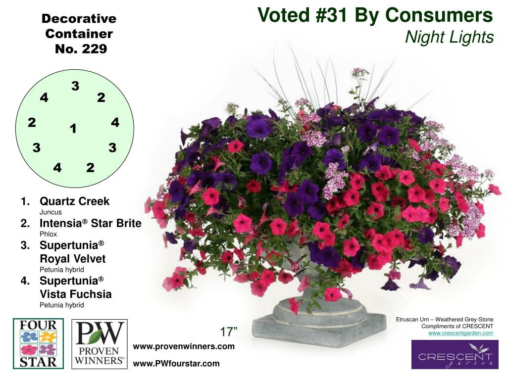 Voted #31 By Consumers