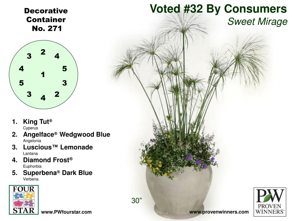 Voted #32 By Consumers