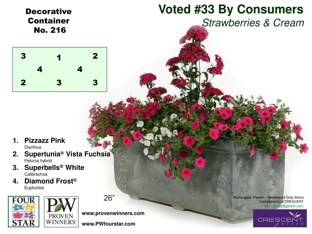 Voted #33 By Consumers