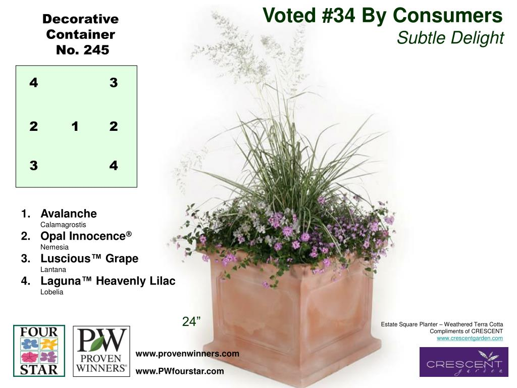 Voted #34 By Consumers