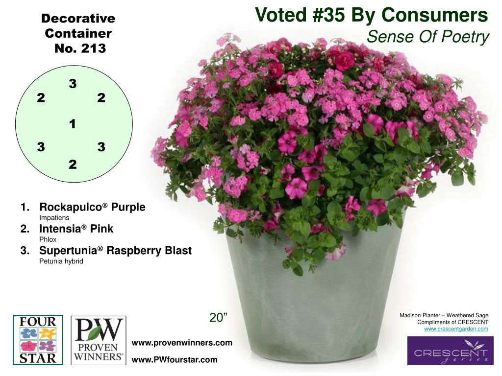Voted #35 By Consumers