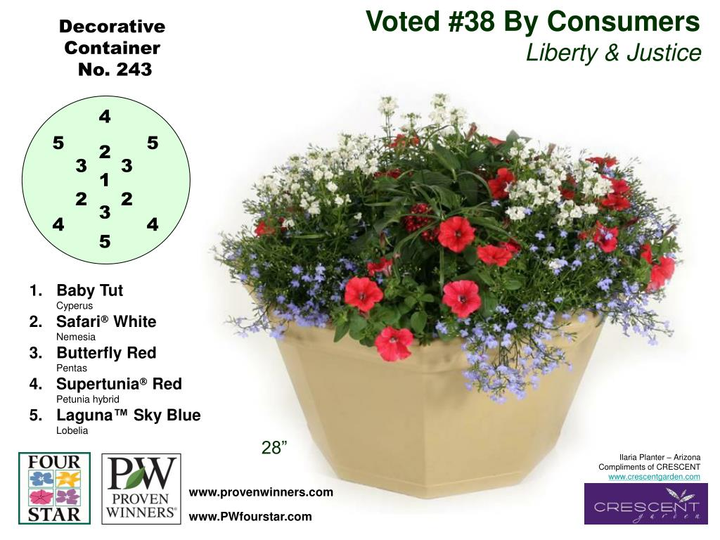 Voted #38 By Consumers