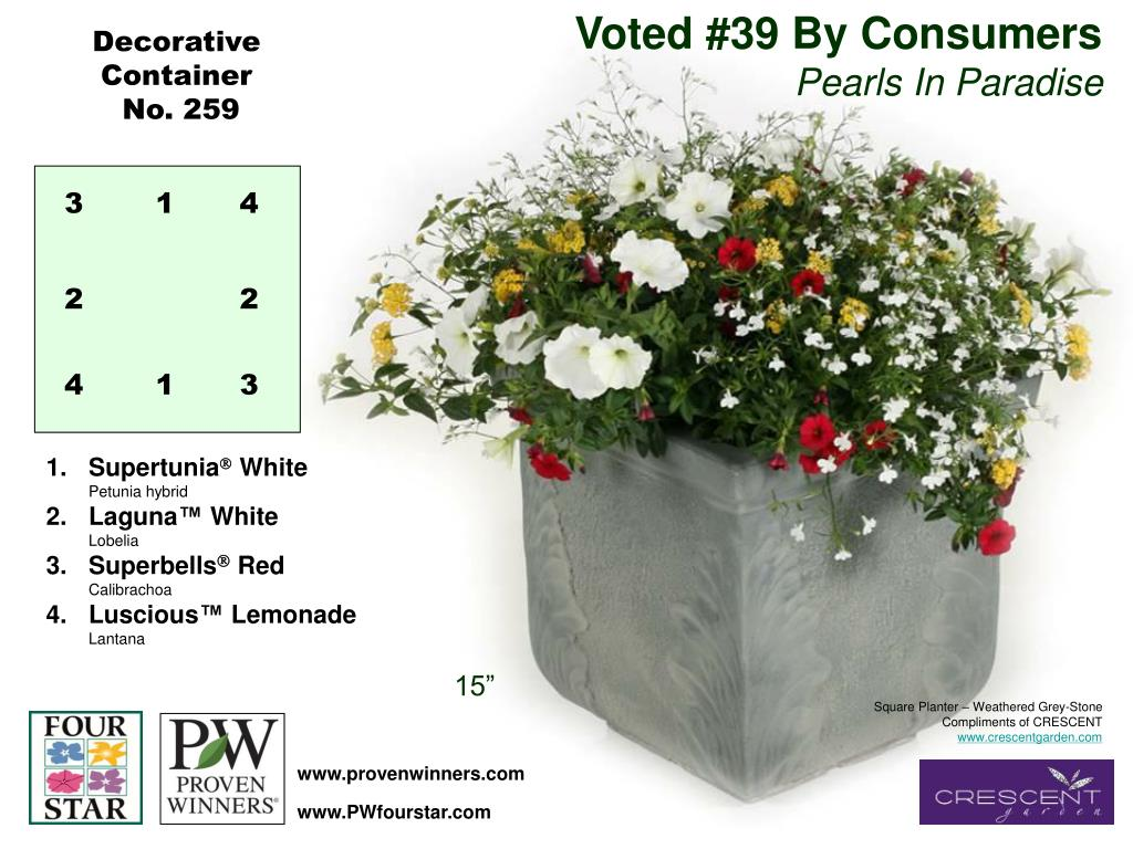 Voted #39 By Consumers