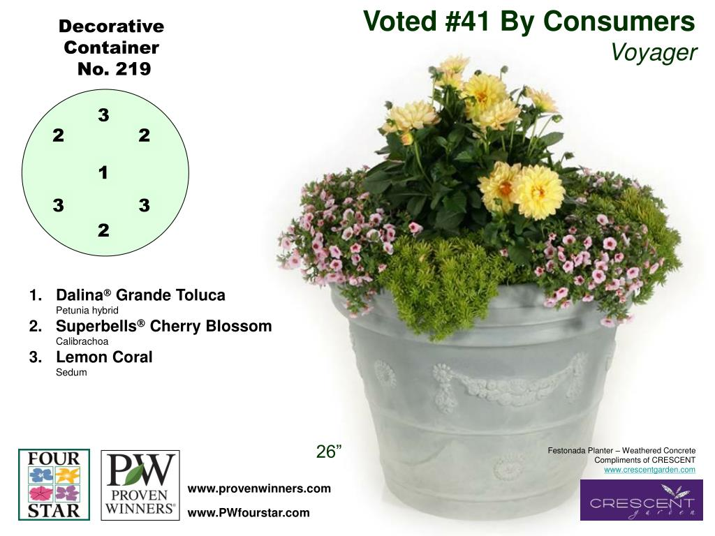Voted #41 By Consumers