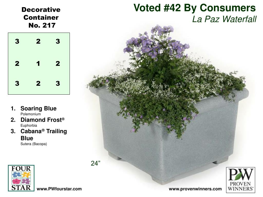 Voted #42 By Consumers