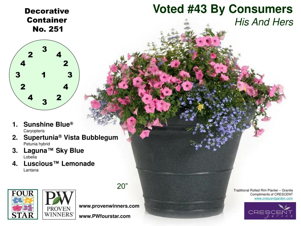 Voted #43 By Consumers