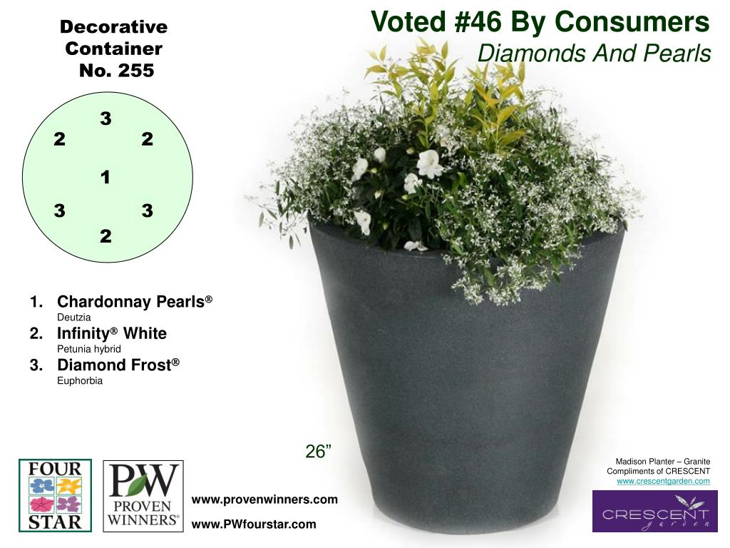 Voted #46 By Consumers
