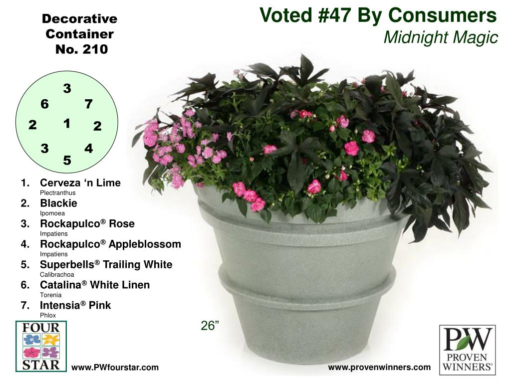 Voted #47 By Consumers