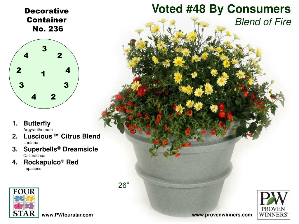 Voted #48 By Consumers