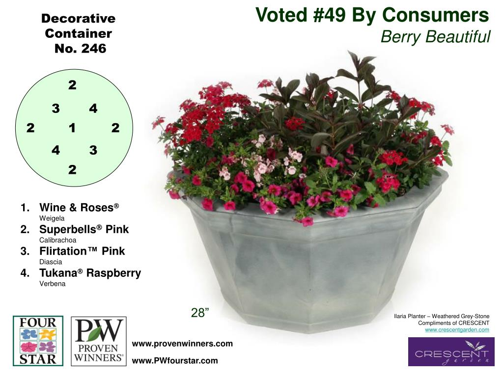Voted #49 By Consumers