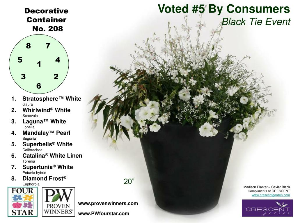 Voted #5 By Consumers