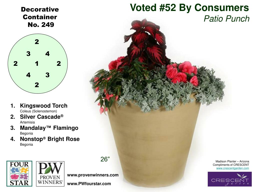 Voted #52 By Consumers