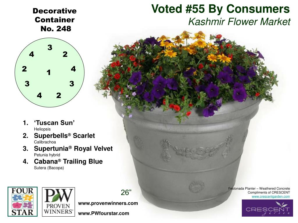 Voted #55 By Consumers