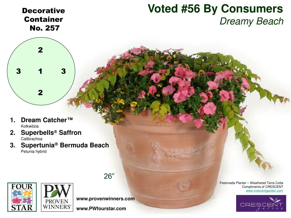 Voted #56 By Consumers