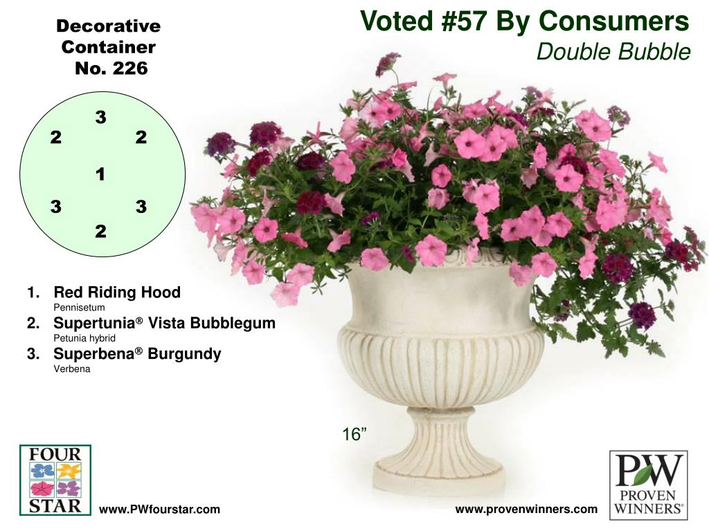 Voted #57 By Consumers