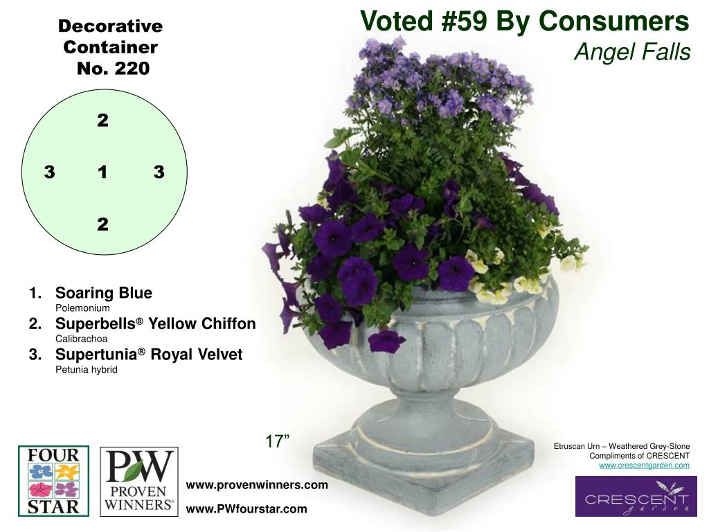 Voted #59 By Consumers