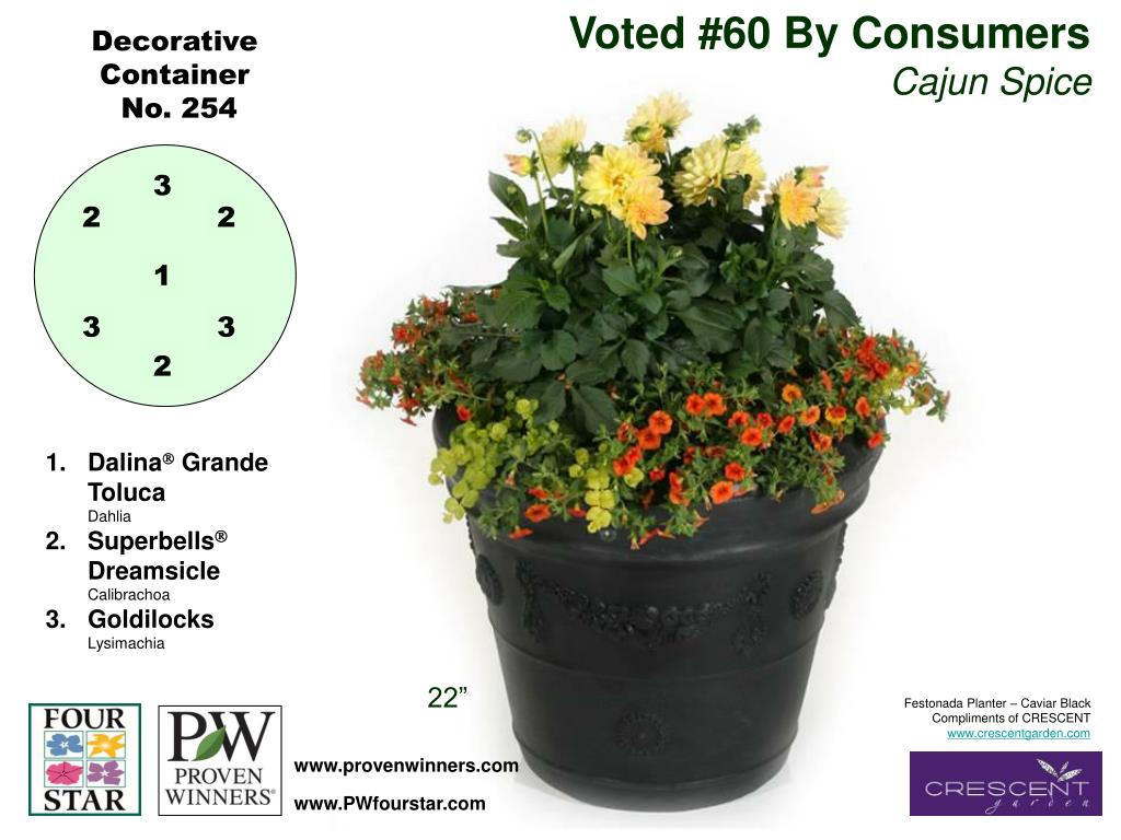 Voted #60 By Consumers