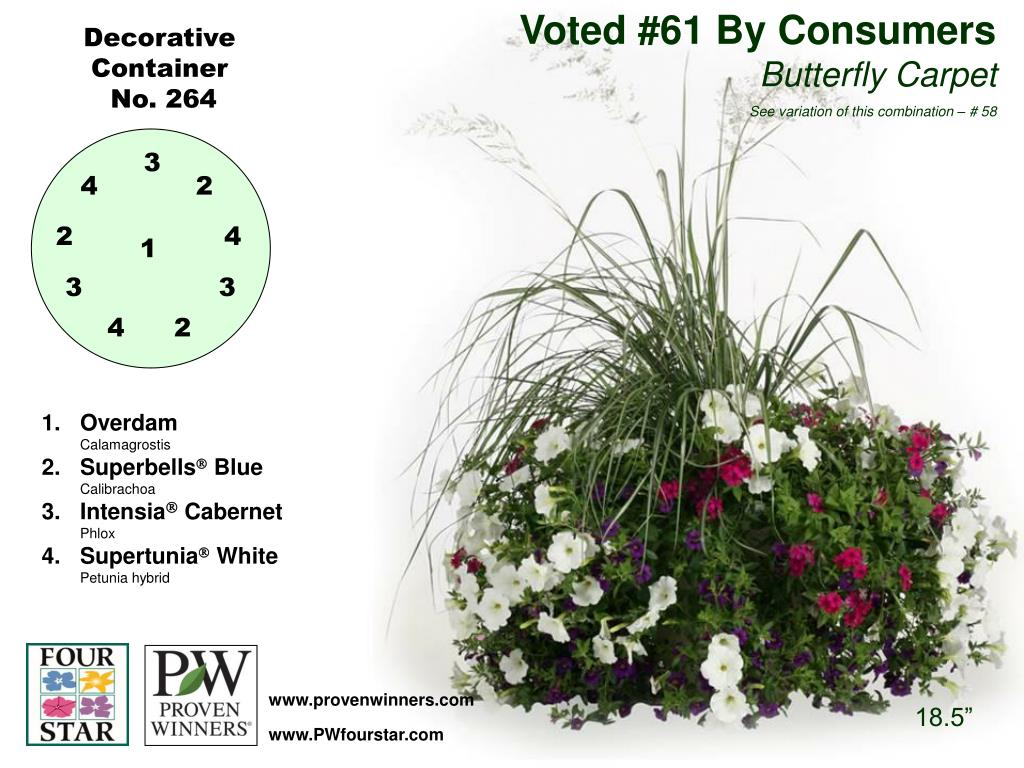 Voted #61 By Consumers