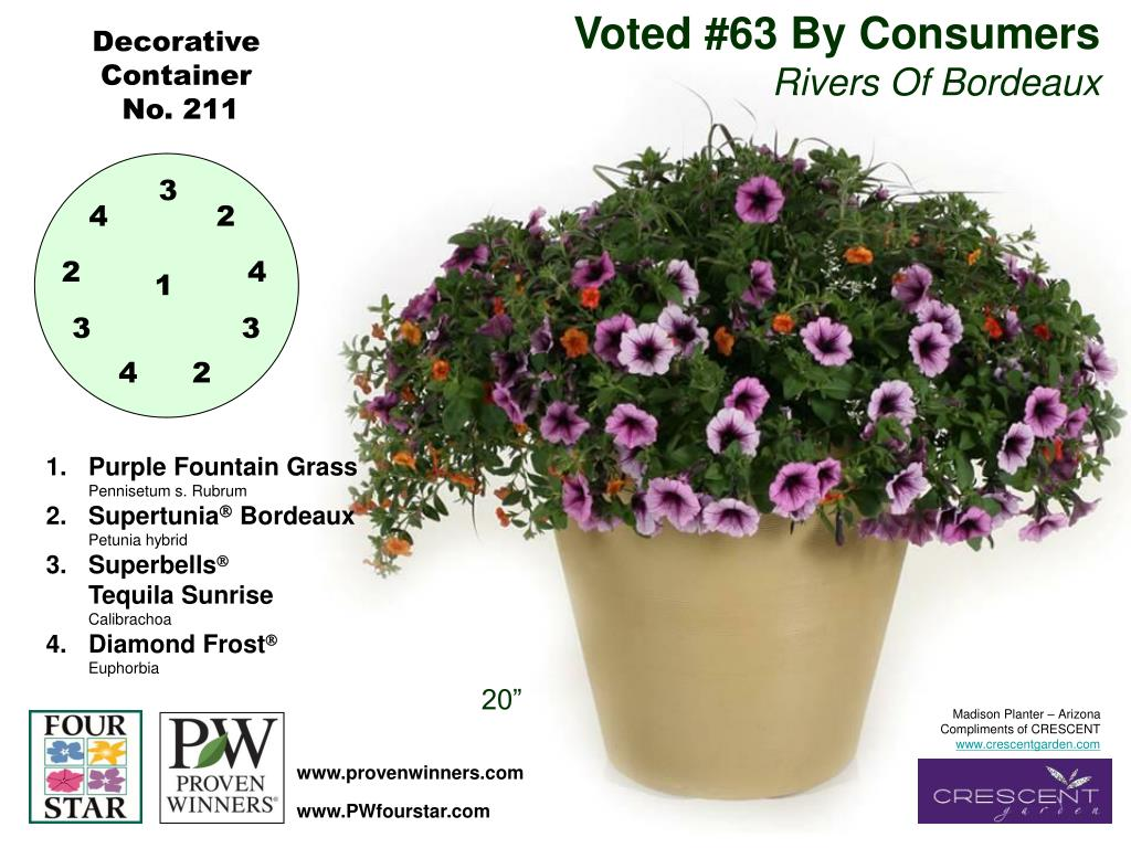 Voted #63 By Consumers