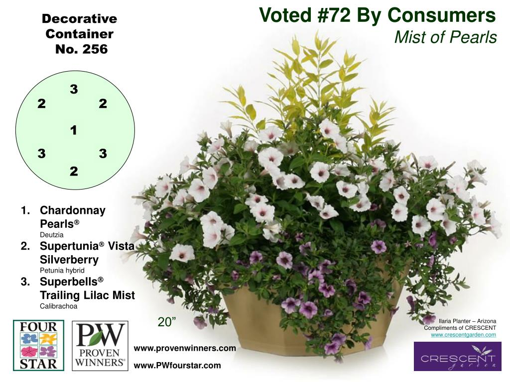 Voted #72 By Consumers