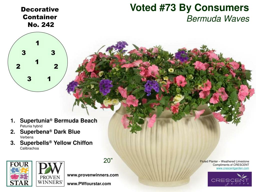 Voted #73 By Consumers