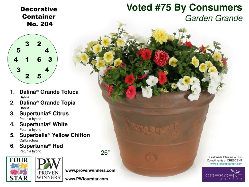 Voted #75 By Consumers
